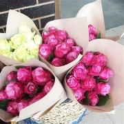Flowersavailableeachweekend@RedHillHouse-image-500x0-1-fe8
